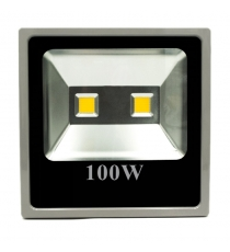 Faro Premium Grigio 100w Smd Ip65 6500k Fenix